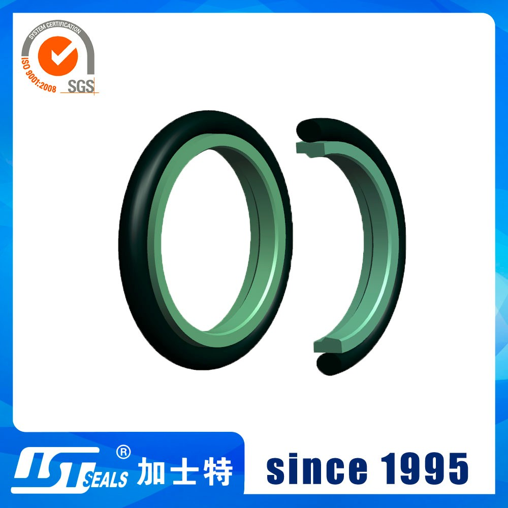 JST seals hydraulic seal apply to bearing