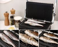 Portable sandwich maker 3 in 1 Painini Press Smoke Meat and Fish