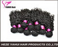 Body Wave Grade 7A Unprocessed Virgin Brazilian Human Hair Extensions