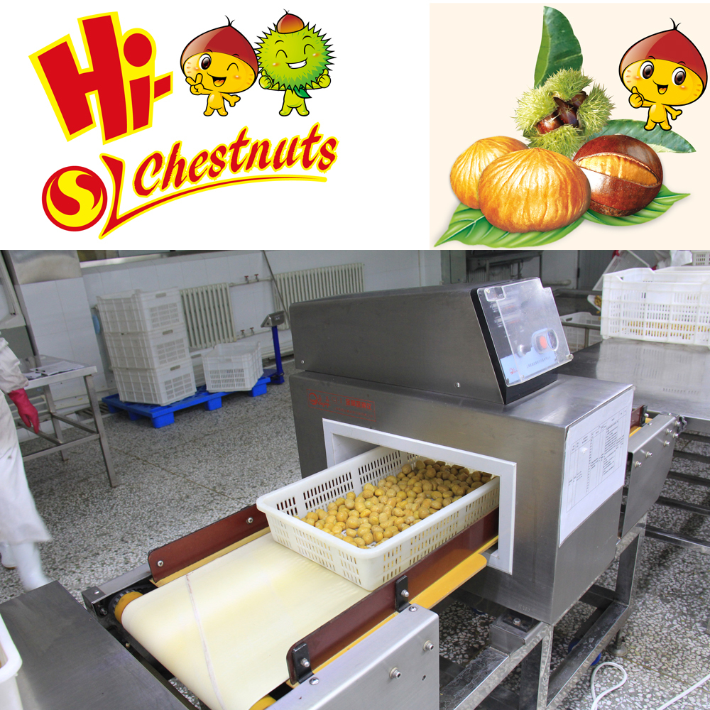 IQF Chestnuts Quick Freezing Bulk Chestnuts for sale