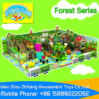 Zhihang Amusement Toys, Indoor Naughty Castle,Indoor Children Playground Forest series