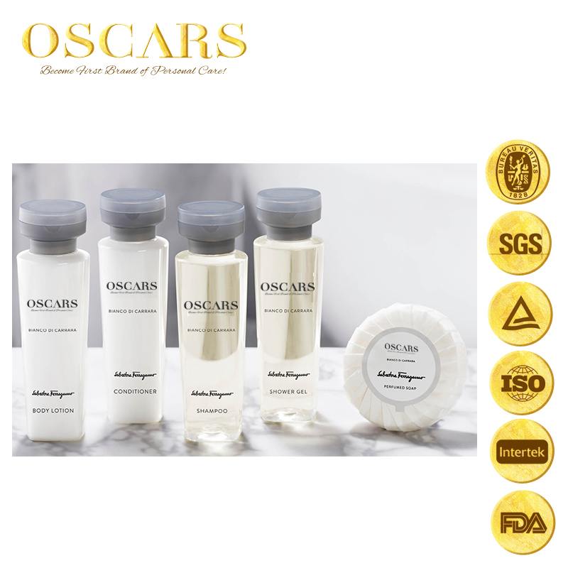 Disposable Nature Hotel Amenity/luxury Hotel Supplies/5 Star Hotel Amenities Set