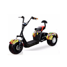 1200W New Arrival Electric Tricycle 3 Wheel Electric Mobility Citycoco for adult