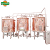 400L craft two vessel mini brewery equipment for sale