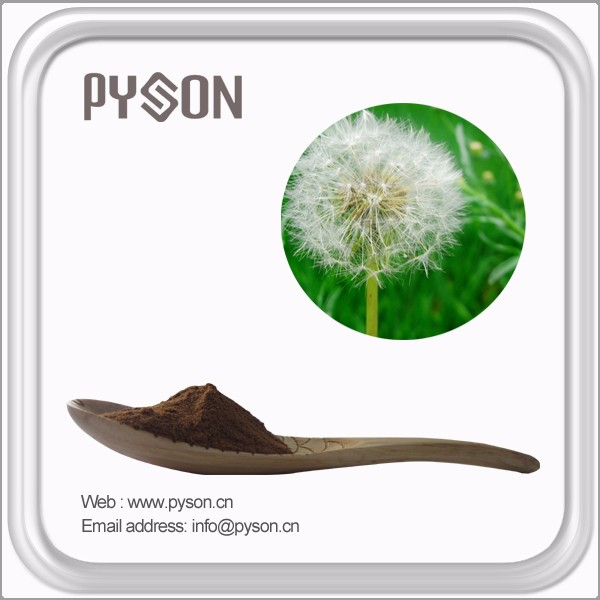 2016 100% Pure natural dandelion extract
