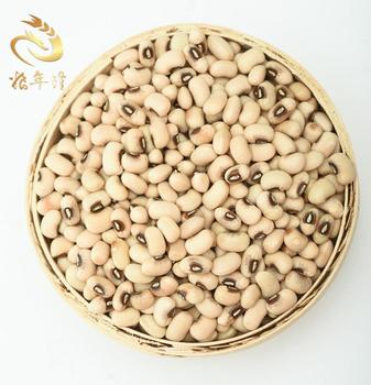 White Cowpea New Crop Black Eye Bean Black Eye Kidney Beans White Black Eyed Cowpea