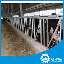 hot dipped galvanized dairy equipment cattle headlock