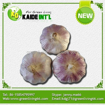 2016 garlic/normal white garlic/pure white garlic with cheap price