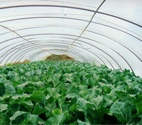 LDPE uv- protection plastic greenhouse films
