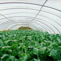 LDPE Uv Protection Plastic Greenhouse Films