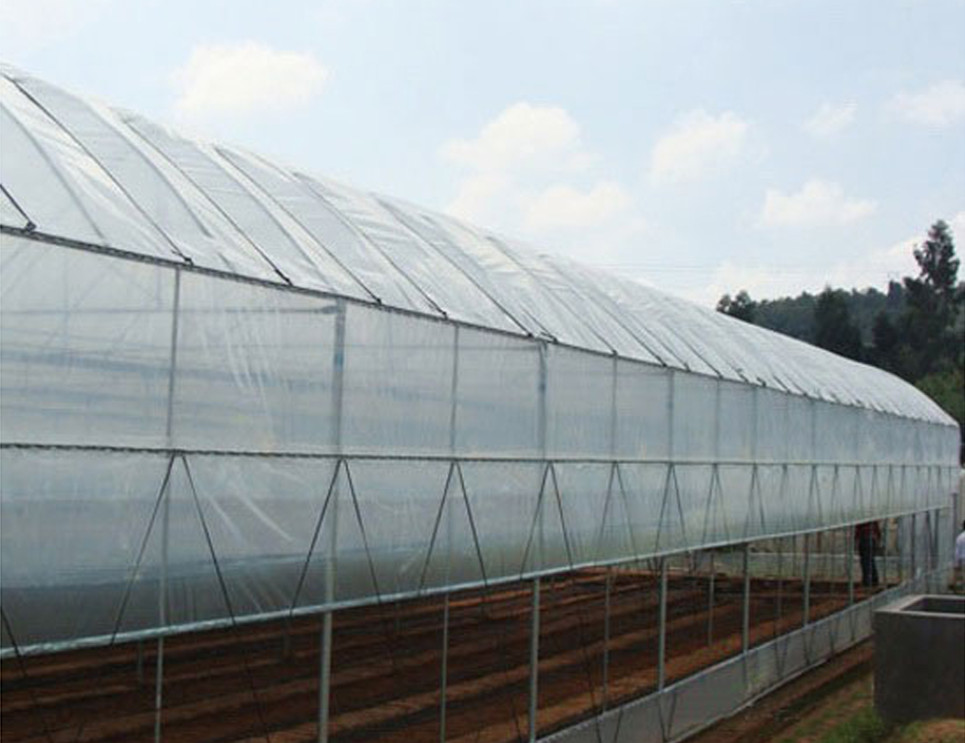 used commercial hoop greenhouse sale