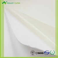 Hot Melt Film M45 Made in China
