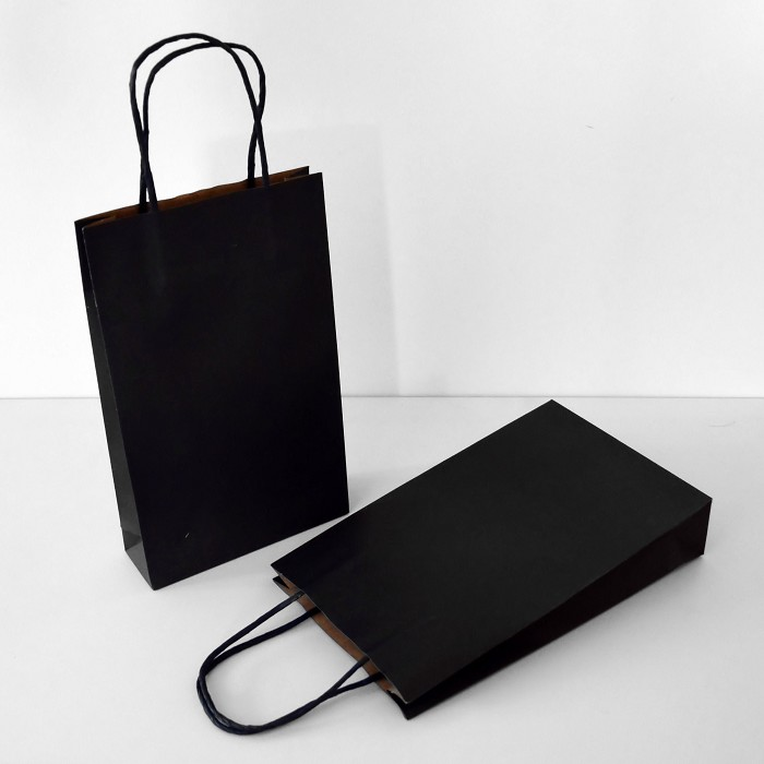 Small Paper Carry Bag
