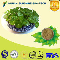 Pure Natural Gotu Kola Leaf Extract/Asiaticoside/Centella Asiatica Herba Extract