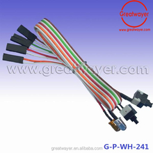 UL 1007 22AWG Ribbon Cable Dupont 2 Pin Housing Switch LED Assembly Wire harness