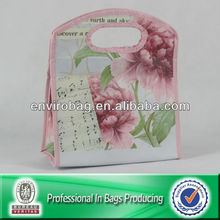 Woman Non Woven PP Handle Grip With Bag Bags Bean bags