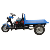 economical cargo motor tricycle most profitable cargo motor tricycle