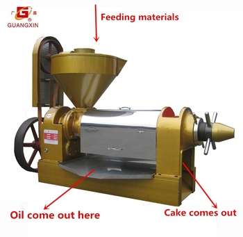 high effective 9-10ton/day rapeseed oil expeller canola oil expeller mustard oil expeller