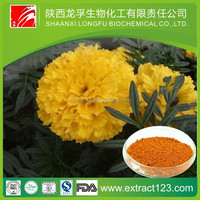 Manufacturer Supply Super Lutein Ester
