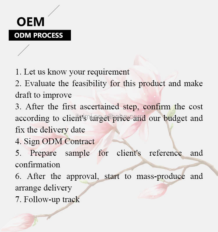 4 in 1 mesotherapy with CE with OEM ODM