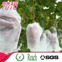 High quality nonwoven fabric fruit protection bag