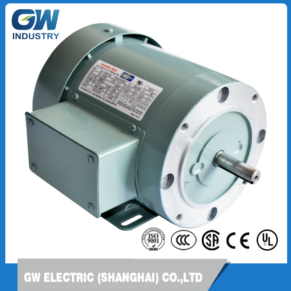 NEMA Waterproof Three-phase ac wheel motor