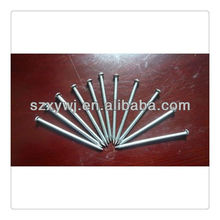 polished common round nails factory