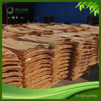 Drying Eucalyptus Wood Chips