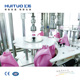 HUITUO automatic bottle washing filling capping machine