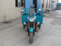 Air Cooled Three Wheel Cargo Motorcycle 3 Wheel Motor Trike ISO9000 CCC Certification