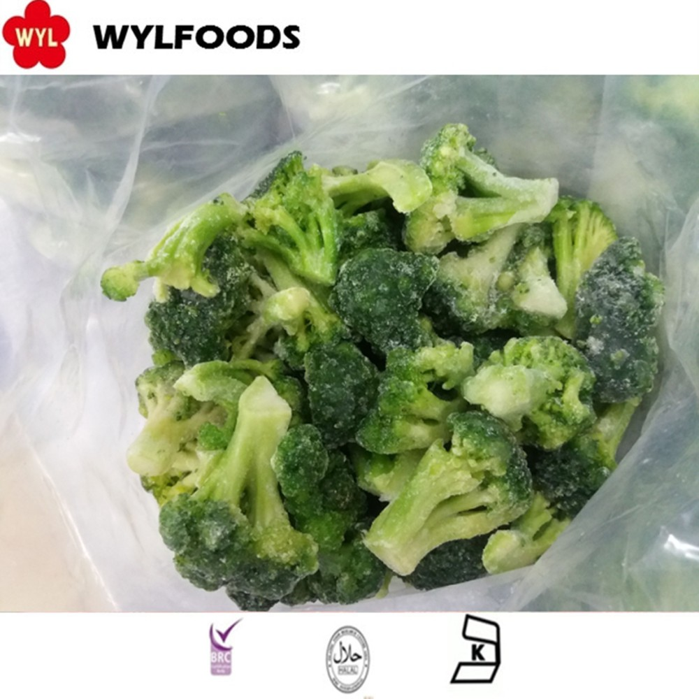 Wholesale bulk IQF Frozen Broccoli Cut