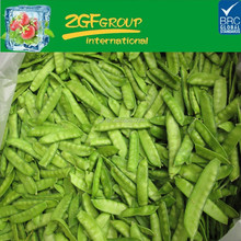 High Quality IQF frozen peapods