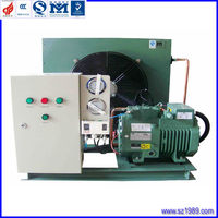 cold room air-cooled bitzer refrigeration semi-hermetic piston compressor condensing unit for cold storage