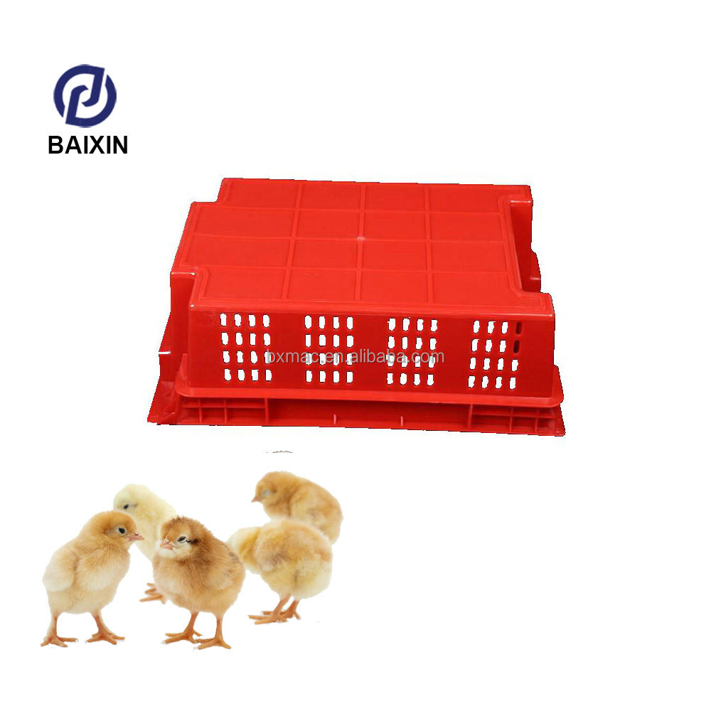 Cheap Plastic Live Bird Broiler Chicken Plastic Transport /Transfer Cages For Sale