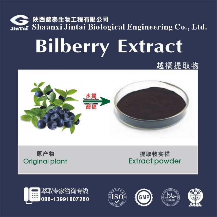 Pure Natural Bilberry,Bilberry Extract Powder