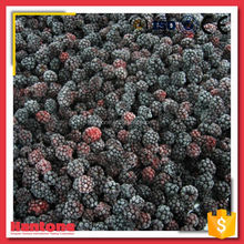 Best Price Fresh Blackberry Fruit