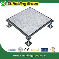 different top tiles elegant surface Antistatic steel concrete core raised flooring for data center