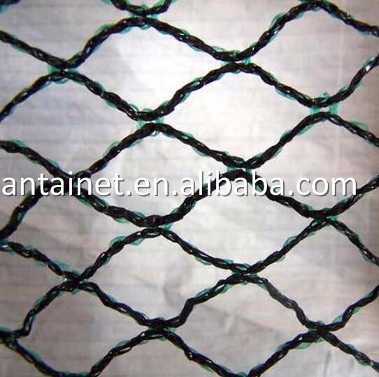 Cheap HDPE Agricultural anti pigeon protection netting