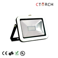 CTORCH Low price led flood light 20W square -test