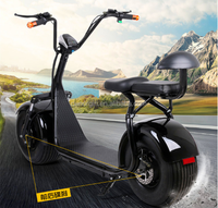 New style city coco scooter 2000w electric scooter ce 2 seat fat tire off road adult electric motorcycle