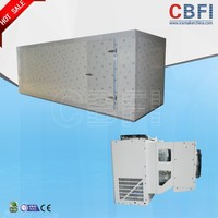 Cheap high output cold room refrigeration compressor