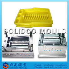 food tray plate mold Nice plastic fruit vegetable dish mould