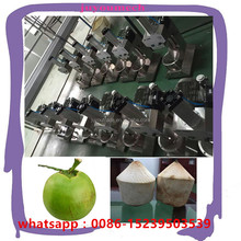automatic young coconut peeling machine/coconut trimming machine/coconut trimmer