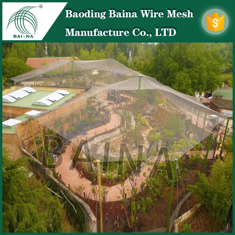 Stainless Steel Bird Mesh Screen