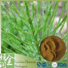Free Sample Natural Horsetail Herb Extract Powder 4:1