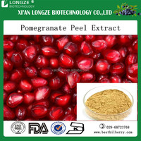 Pomegranate juice powder/pomegranate juice extract for soft drinks/pomegranate juice concentrate