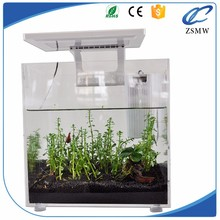 Alibaba zhongshan factory hot sale white Square 25*25*25cm acrylic aquarium fish tank