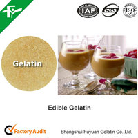 Sale High Quality Organic Edible Gelatin Powder with Best Price