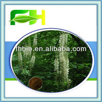 Best Quality Natural Cimicifuga Racemosa P.E.