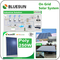 High efficiency and best price poly 260w solar panel price
